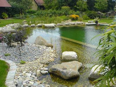 Schwimmingpool Garten war genial stil für ihr haus design ideen